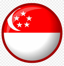 Trusted Singapore Company